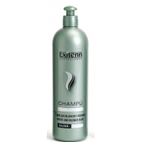 Exitenn Champú Color Plata 500ml